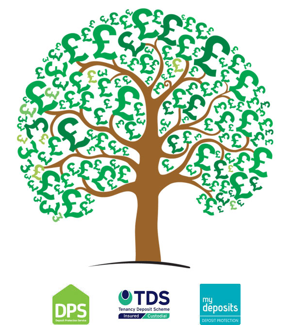 Money tree concept - DPS (Deposit Protection Service), TDS (Tenancy Deposit Scheme), My Deposits Deposit Protection